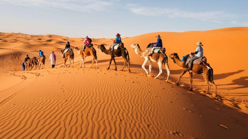 15 curiosités surprenantes sur le désert du Sahara