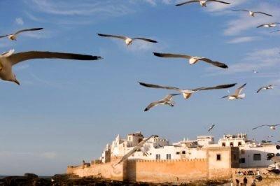 Essaouira ville du Maroc