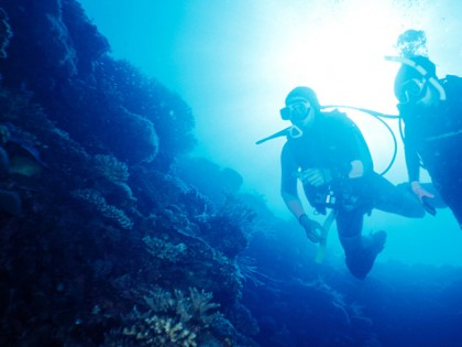 Plonger aux Philippines